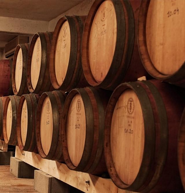 Cave à vin Chateau Sainte Beatrice